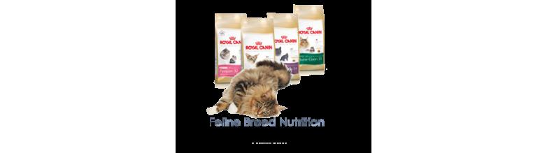FELINE BREED NUTRITION