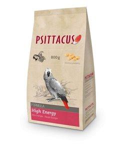 Psittacus alta energía