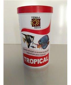 Alimento especial para peces tropicales