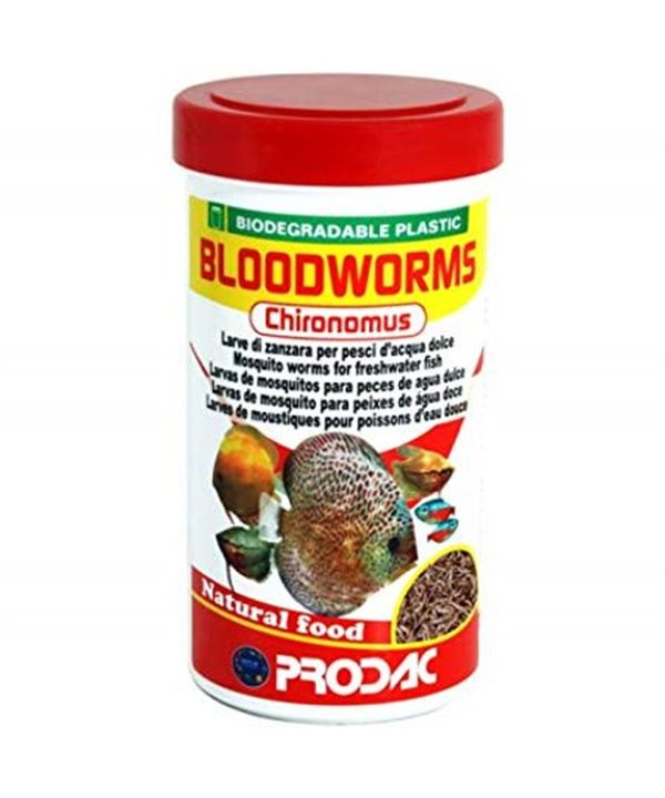 Bloodworms Chironomus