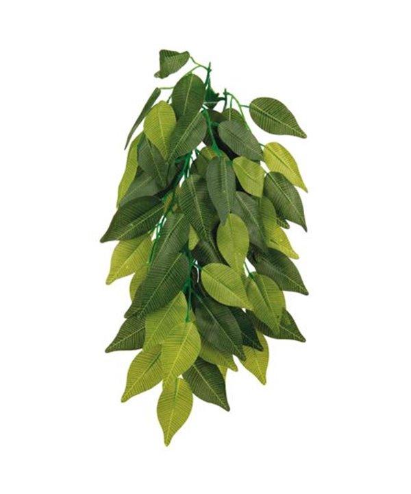 Planta seda colgante para terrarios