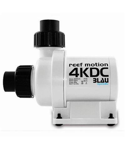 Reef Motion 4KDC