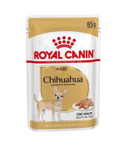 CHIHUAHUA ADULT HUMEDO
